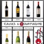 Vinos Ribera del Duero - Cavas y Champagne